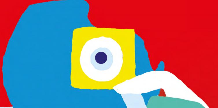 jaarverslag-craniofaciaal-centrum-2015